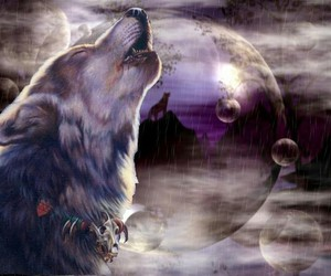 moon, purple, and wolf image