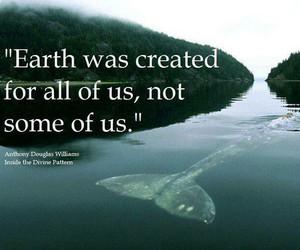 earth, animal, and vegan image