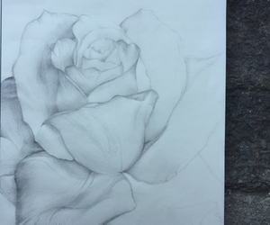 drawing, flowers, and freedom image