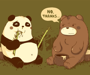panda, bear, and illustration image
