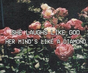lana del rey, quotes, and Carmen image