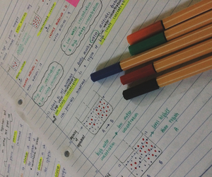 bio, study, and colourful image