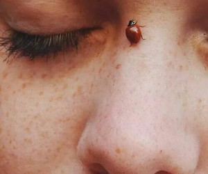 indie, freckles, and ladybug image