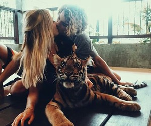 couple, love, and tiger image
