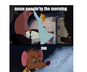 morning, cinderella, and funny image