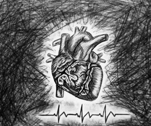 heart, beat, and pic image