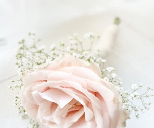 beautiful, bouquet, and romantic image