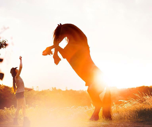 beautiful, equestrian, and happiness image