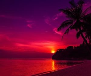 sunset, beach, and paradise image