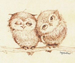 love, owls, and cute image