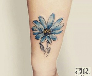 azul, flower, and blue image