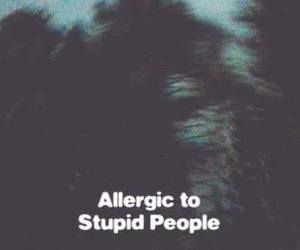 allergic, haters, and people image