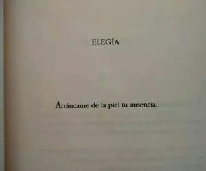 amor, book, and desamor image