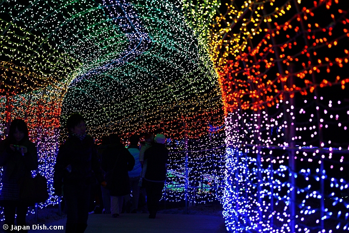 google image result for httpwwwjapandishcomimages2010japan christmas lights 3jpg