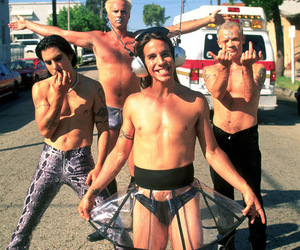 flea, red hot chili peppers, and anthony kiedis image