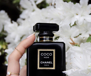 black, coco, and perfume image