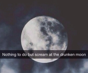 moon, night, and quote image