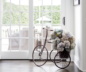 bicycle, flowers, and white image