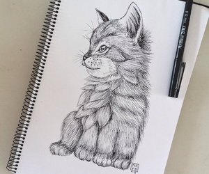cat, drawing, and cute image