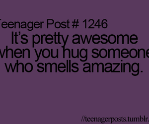 hug, quote, and smell image