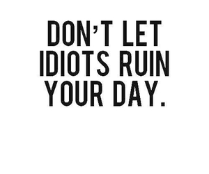 quotes, idiot, and day image