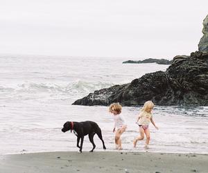 dog, beach, and kids image