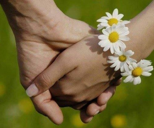couple, daisy, and flowers image