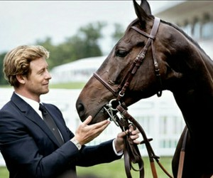 horse, simon baker, and cute image