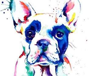 dog, art, and colors image