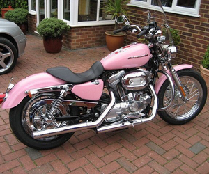 harley davidson and pink image