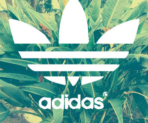 adidas, background, and green image