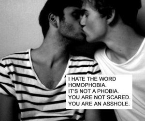 gay, homophobia, and quote image