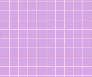grid, purple, and square image