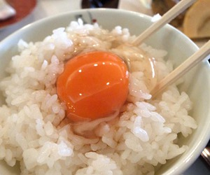 egg, food, and japanese image