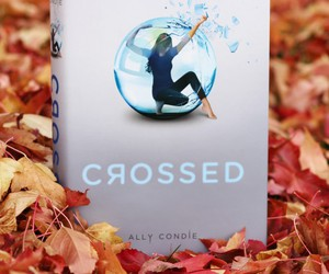 books, crossed, and matched image