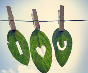 love, leaves, and I Love You image