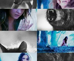 teen wolf, shelley hennig, and malia tate image