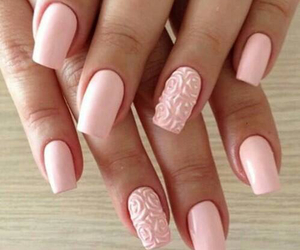 pink, roses, and nials image