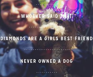 cutie, dog, and bestfriends image
