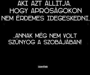 funny and magyar image
