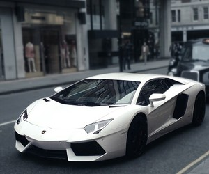 car, white, and Lamborghini image