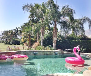 pool, summer, and donuts image