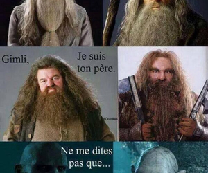 harry potter, lol, and gandalf image