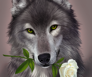 wolf, animals, and drawings image