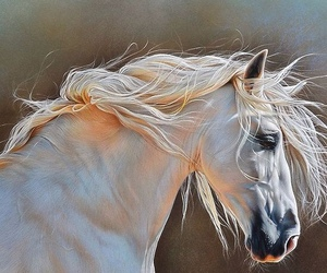 art, white, and horse image