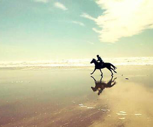 horse, beach, and beautiful image