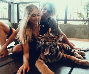 couple, tiger, and love image