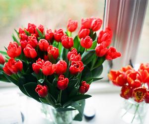 film, flowers, and minolta srt 101 image