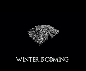 stark, winter is coming, and jon snow image