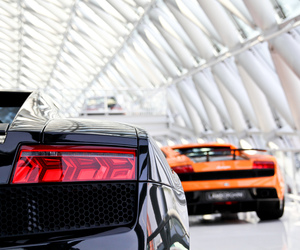 Lamborghini, speed, and supercar image